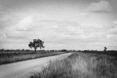 Back Road in Parkes, NSw